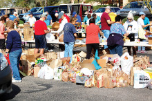Sorting food at the last food drive undefined
