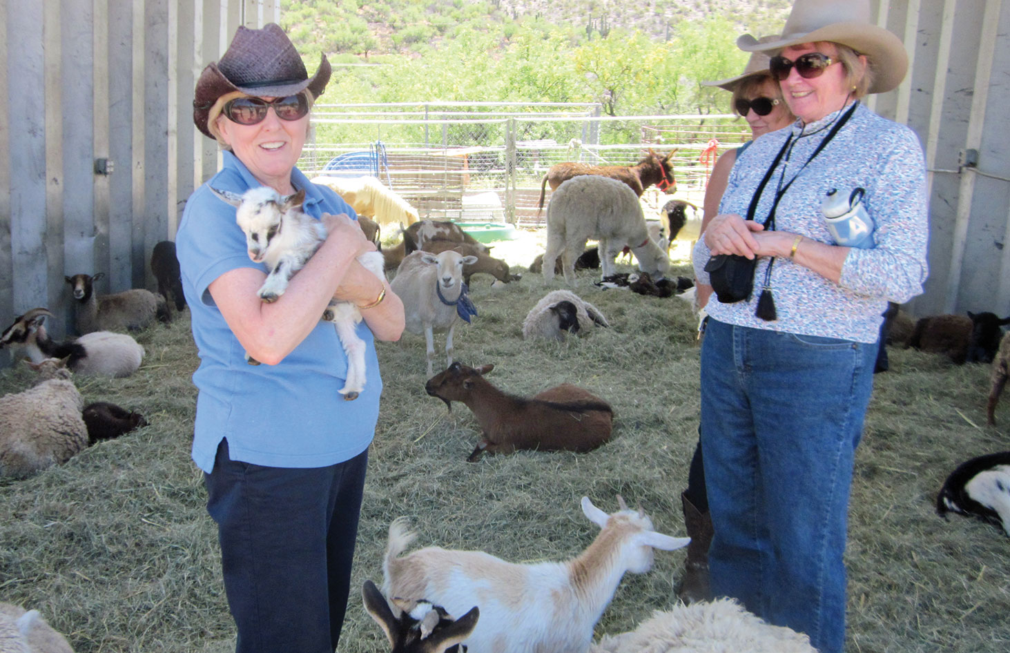 Rebecca Williams, at left, enjoying the petting zoo at Colossal Cave with Loretta Johnson and Lee Rinke
