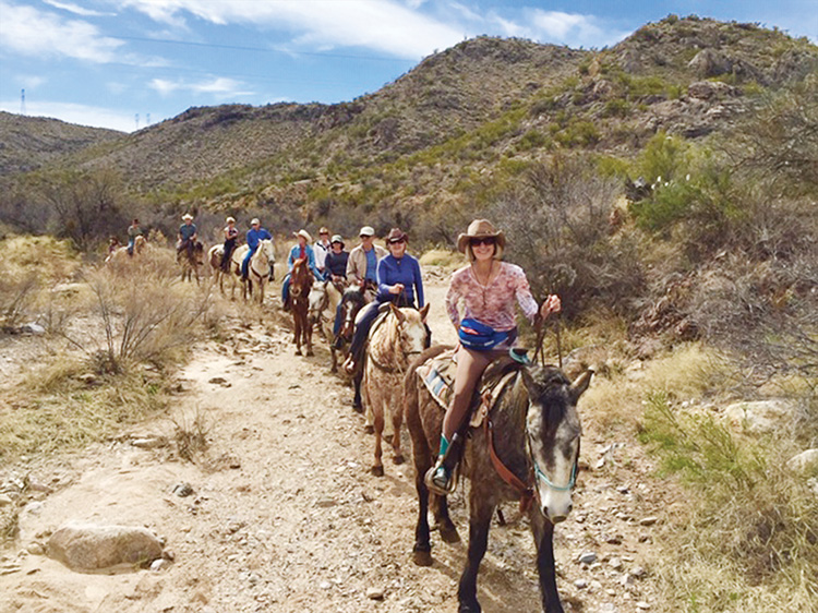 All the riders on the trail from right to left: Carol Osgood, Rebecca Williams, Randy Gelb, Audrey Gelb, Jennifer Betts, Margaret Somenske, Gene Lee, Christine Lee, Don Williams and Tom Somenske.