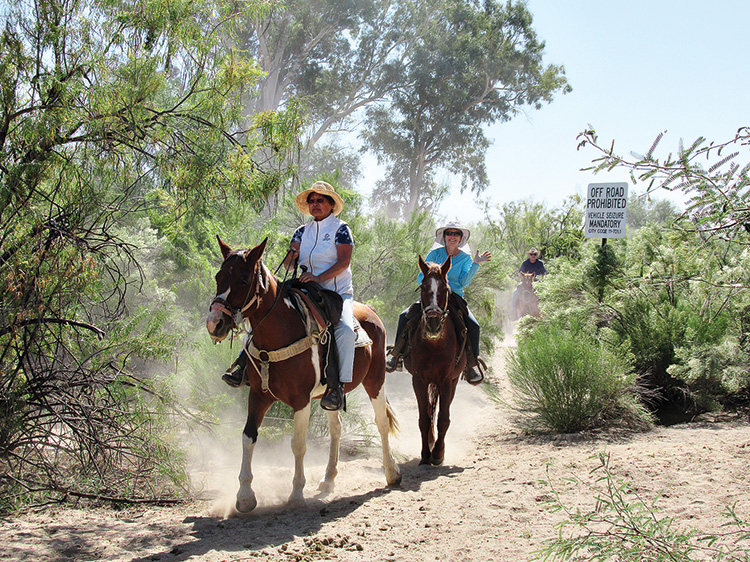 Mary Fung and Cindy Valancius enjoy riding through the shady trees and scrub brush.