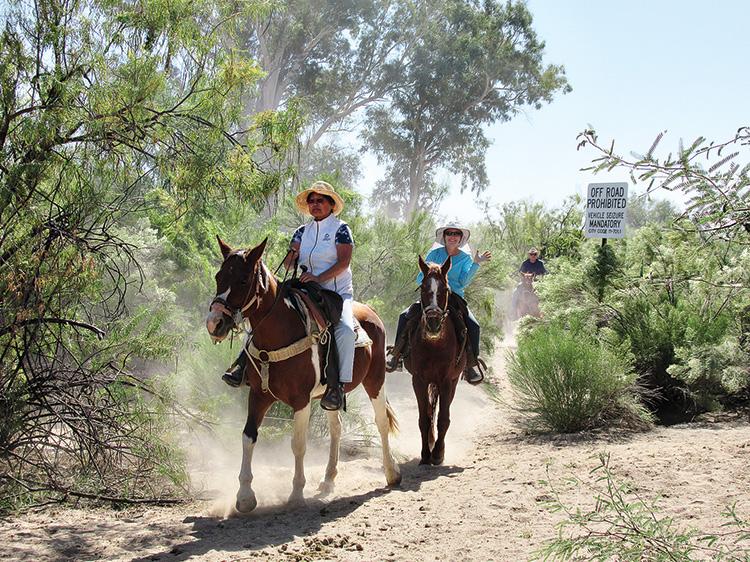 Mary Fung and Cindy Valancius enjoy riding through the shady trees and scrub brush.