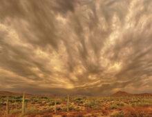 Roger Cowles: Monsoon Sunset