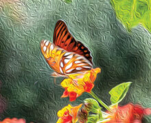 Mike Magic: Butterfly Oil Painting