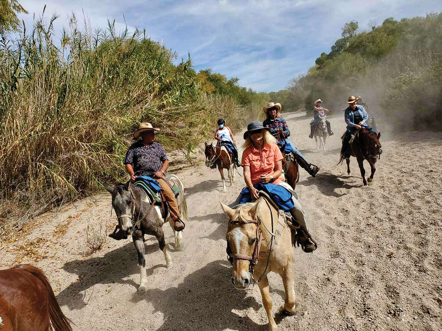 Front to back: Susan Stratton Miller, Rob Densmore, Tess Denmore, Wolfe Tombe, Kaye McMillan, Neil Uscier (talking to Joyce, the wrangler). We just see the hind end of Mike Miller's horse in the front.