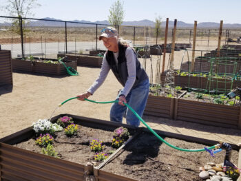 Gretchen watering her garden space.