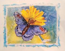 Butterfly by Karen Brungardt